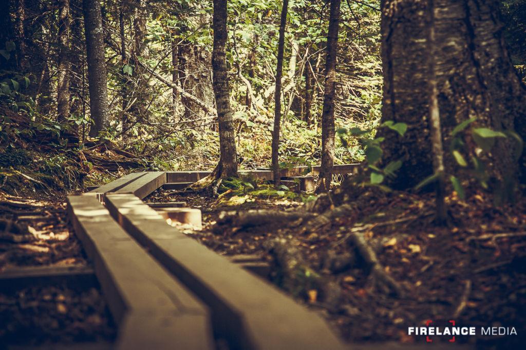 """Documerican Road"": Our Next Major Project 3 - Firearms Photographer | Firelance Media"